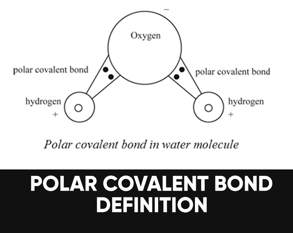 Polar Covalent Bond Definition