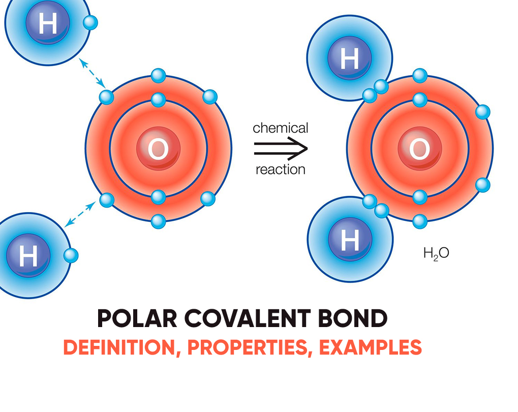 Polar Covalent Bond – Definition, Properties, Examples